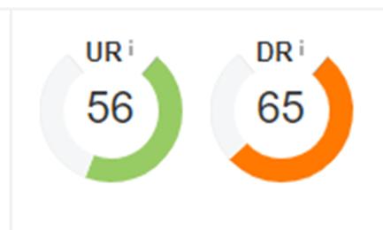 UR – рейтинг конкретной страницы, а DR –рейтинг домена в целом. Это собственные метрики сервиса Ahrefs для измерения авторитета страницы и веб-сайта соответственно.
